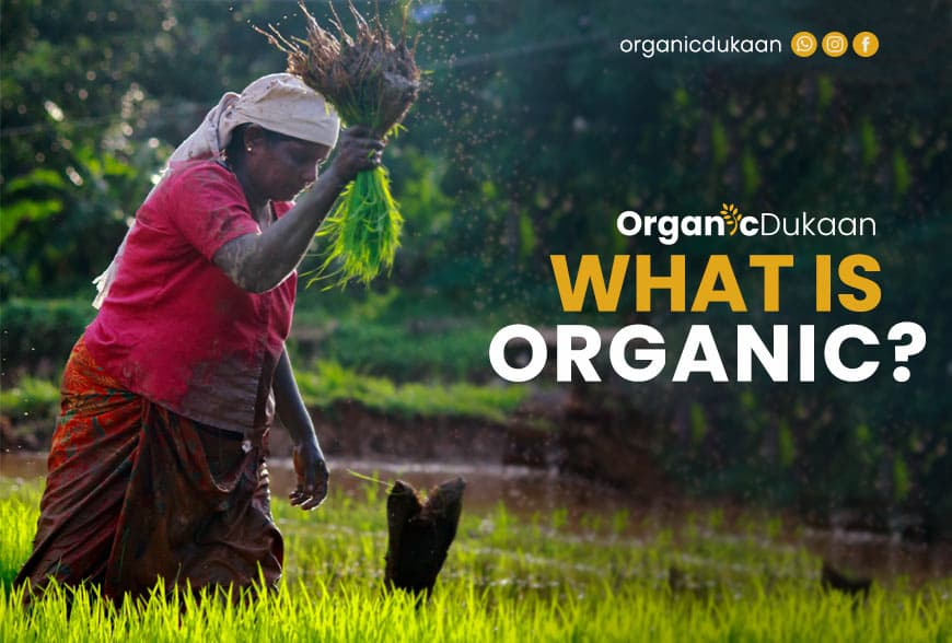 What exactly is Organic?