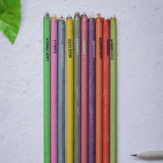 Colored Paper Seed Pencil by TheSagez OrganicDukaan
