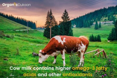 Fitness with Cow Omega-3 acid OrganicDukaan