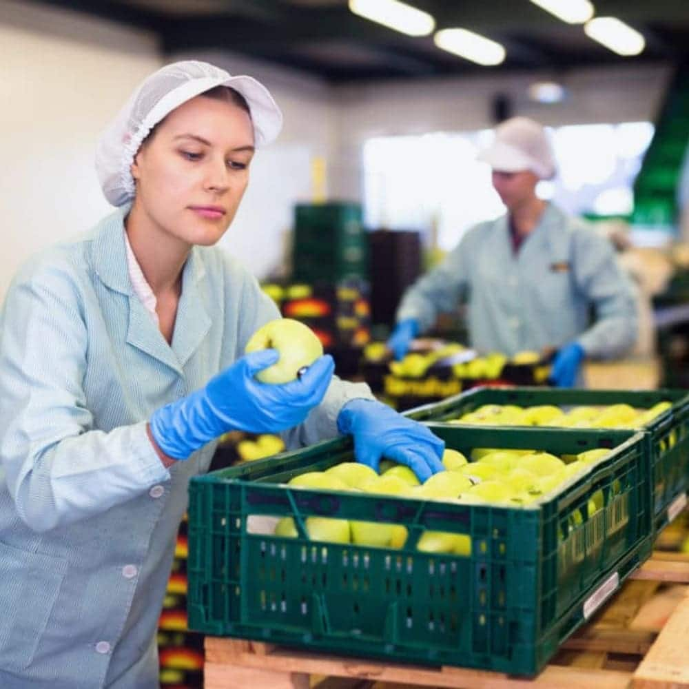 Sorting for high quality OrganicDukaan